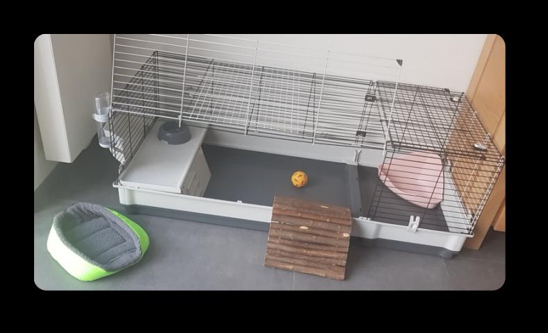 cage aménagée pour les lapins