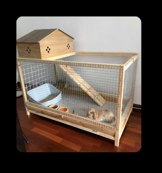 idée aménagement pour lapin angora anglais ou lapin nain